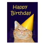 Feliz cumpleaños del gato feliz postal