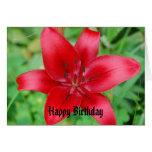 Feliz cumpleaños del lirio rojo felicitacion