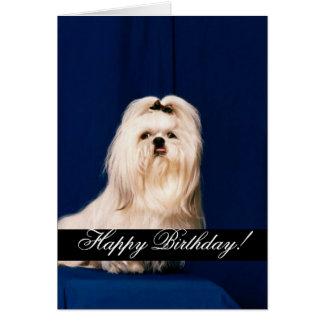 Feliz cumpleaños domesticado de los animales 222 felicitación