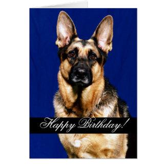 Feliz cumpleaños domesticado de los animales 227 felicitación
