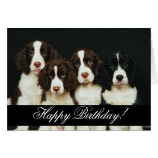 Feliz cumpleaños domesticado de los animales 252 felicitación