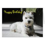 Feliz cumpleaños, espacio en blanco, mini Schnauze Felicitacion