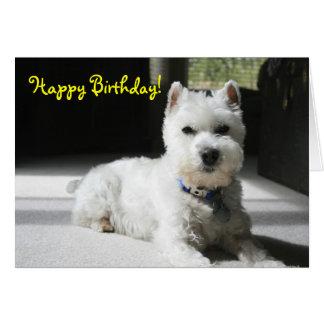 Feliz cumpleaños espacio en blanco mini Schnauze Felicitacion