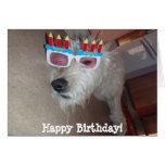 ¡Feliz cumpleaños! Felicitaciones