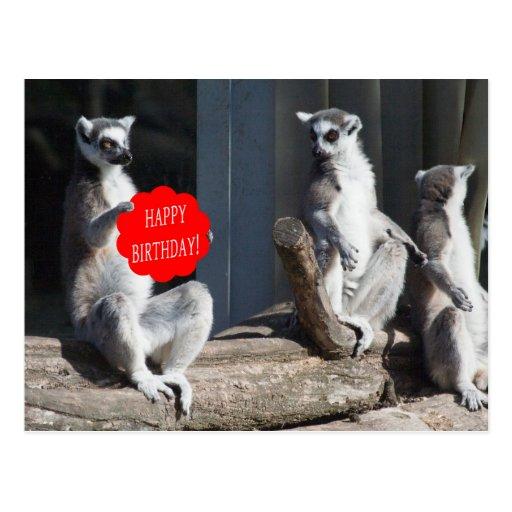 Feliz cumpleaños Katta Tarjeta Postal