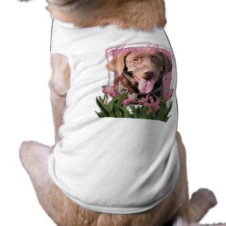 Feliz cumpleaños - Labrador - chocolate Playera Sin Mangas Para Perro