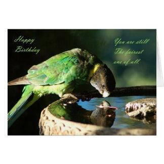 Feliz cumpleaños - loro tarjeta de felicitación