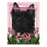 Feliz cumpleaños - mojón Terrier - Rosco Tarjeta Postal