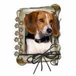 Feliz cumpleaños - patas de piedra - beagle escultura fotografica