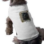 Feliz cumpleaños - patas de piedra - Terranova Camisas De Perritos