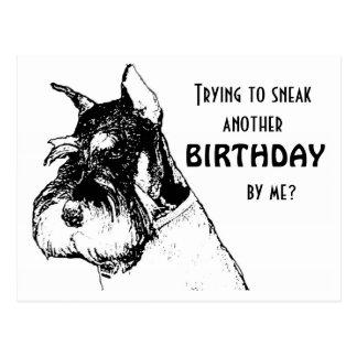 Feliz cumpleaños que se escabulle cerca tarjeta postal
