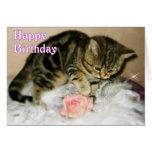 Feliz cumpleaños - tarjeta de cumpleaños del gatit