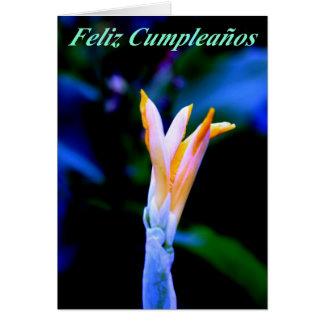 Feliz Cumpleanos Tarjeta De Felicitación