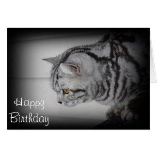 Feliz cumpleaños - tarjeta de felicitación de plat