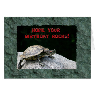 Feliz cumpleaños, tortuga en roca tarjeta de felicitación