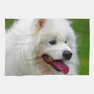 Feliz de verle perseguir al mascota canino del sam toalla de cocina