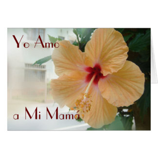Feliz Dia de la Madre 12 . Card