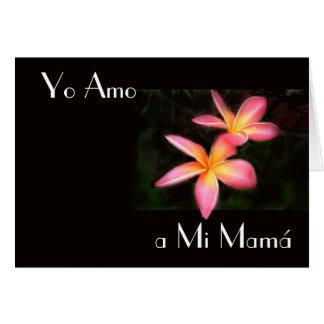 Feliz Dia de la Madre 13 Card