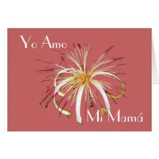 Feliz Dia de la Madre 14 Card