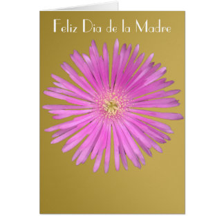 Feliz Dia de la Madre 17 Card