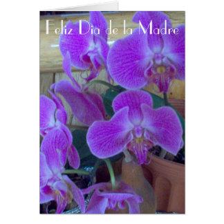 Feliz Dia de la Madre 5 Card