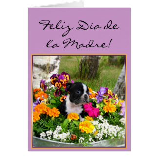 Feliz dia de la Madre Boston Terrier greeting card