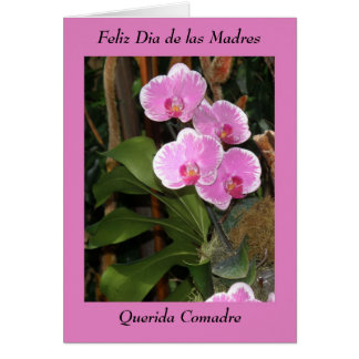 Feliz Dia de las madres Comadre Greeting Card
