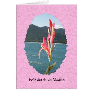 Feliz dia de las Madres general Card