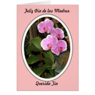 Feliz Dia de las Madres Querida Tia Card