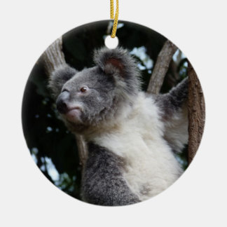 feliz koala-mas adorno navideño redondo de cerámica