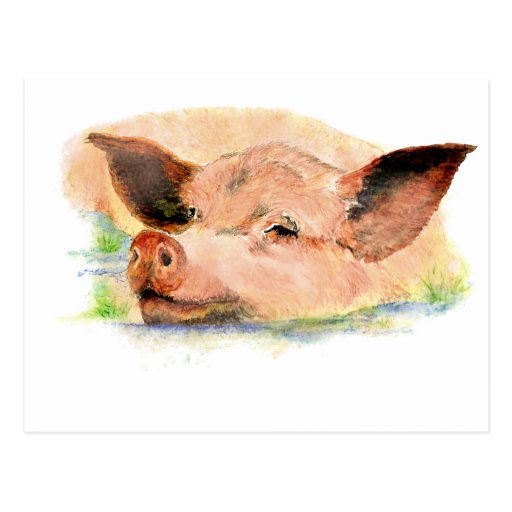 Feliz lindo como cerdo en el fango, animal del cam tarjeta postal