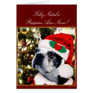 Feliz Natal Christmas Boston terrier Card