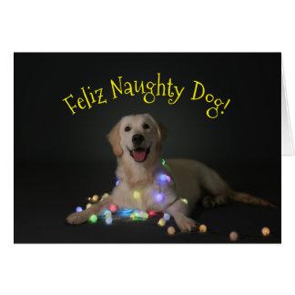 Feliz Naughty Dog Christmas Card