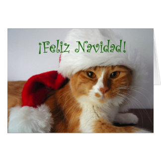 Feliz Navidad - Cat Wearing Santa Hat Greeting Card