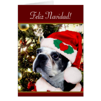 Feliz Navidad Christmas Boston terrier Card