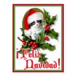 Feliz Navidad - Christmas Kitten Post Card