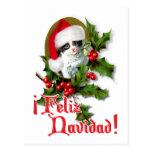 Feliz Navidad - Christmas Kitten Postcard
