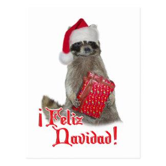 Feliz Navidad - Christmas Raccoon Bandit Postcard