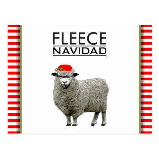 Feliz Navidad holidays humor Postcard