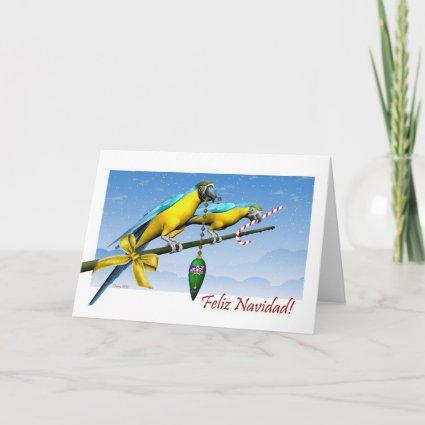 Feliz Navidad Macaw Birds Spanish Christmas Card