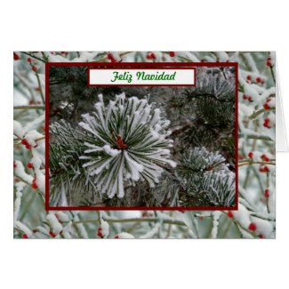 Feliz Navidad Merry Christmas in Spanish and snow Cards