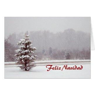 Feliz Navidad Merry Christmas in Spanish and snow Greeting Card