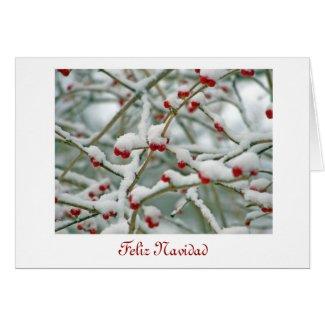 Feliz Navidad Merry Christmas in Spanish and snow Card