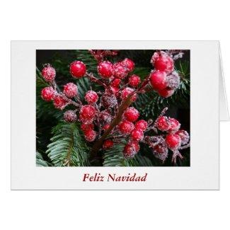 Feliz Navidad Merry Christmas in Spanish berries Greeting Cards
