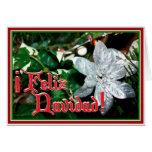 Feliz Navidad - Silver Poinsettia Ornament Greeting Cards