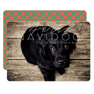 Feliz Navidog | Holiday Photo Card