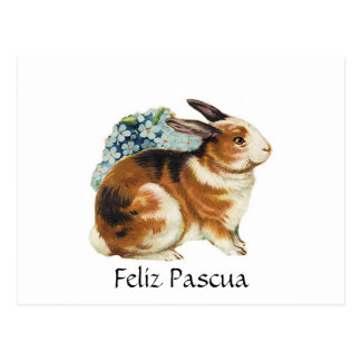 Feliz Pascua  , Happy Easter  in spanish Postcard