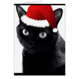 Feliz pequeña tarjeta del gato del navidad