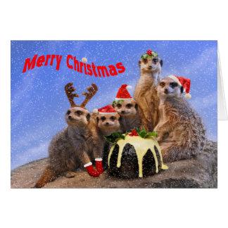 Feliz tarjeta de Navidad de Meerkats