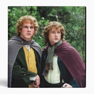 Feliz y Peregrin